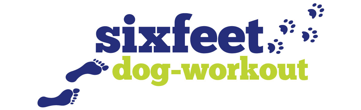 sixfeet dog-workout